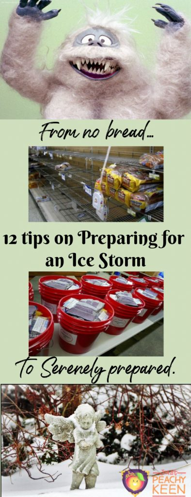 12 tips for preparing for an Ice Storm.