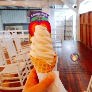 Some of the best peach soft serve you will ever taste can be found at Dickey's! #ExploreGeorgiaFarms #GAAgritourism - Just Peachy Keen with the Peachy Queen