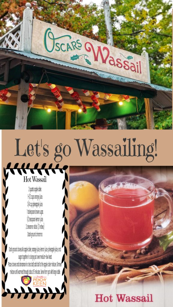 Make Hot Wassail at home for your Christmas celebrations! - Just Peachy Keen